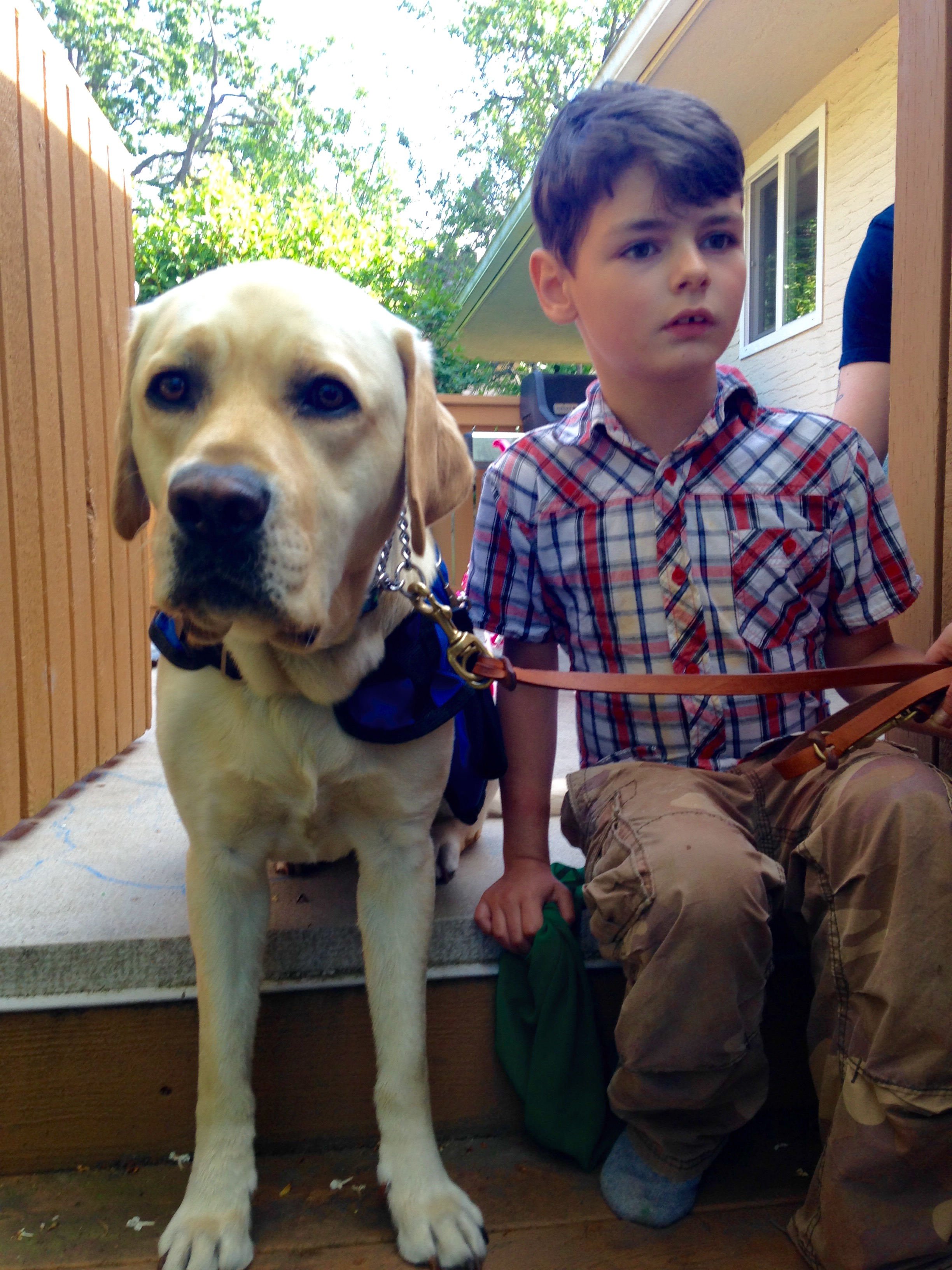 Autism Assistance Dog Reverse Search
