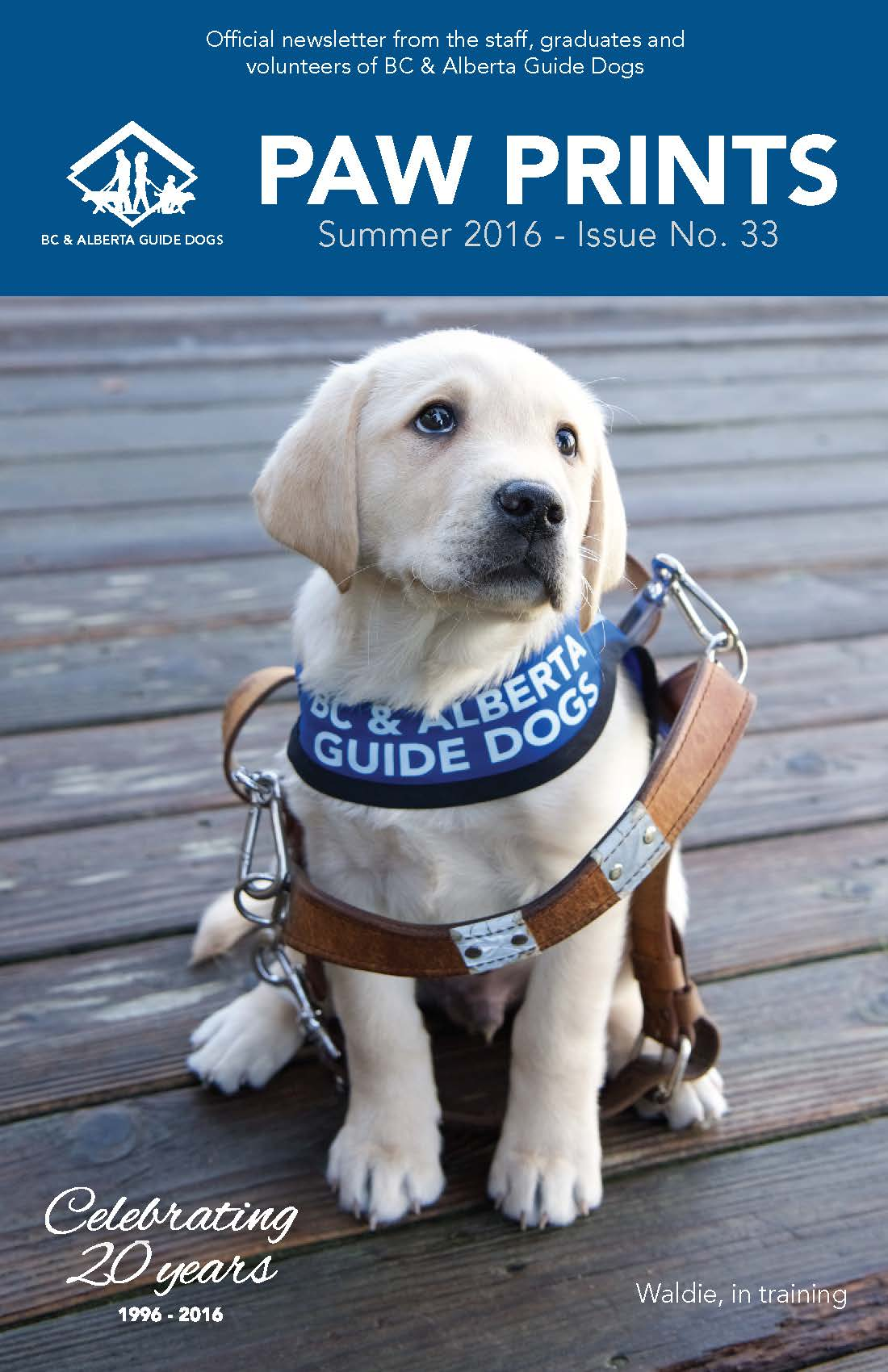 Guide Dog Training Vancouver