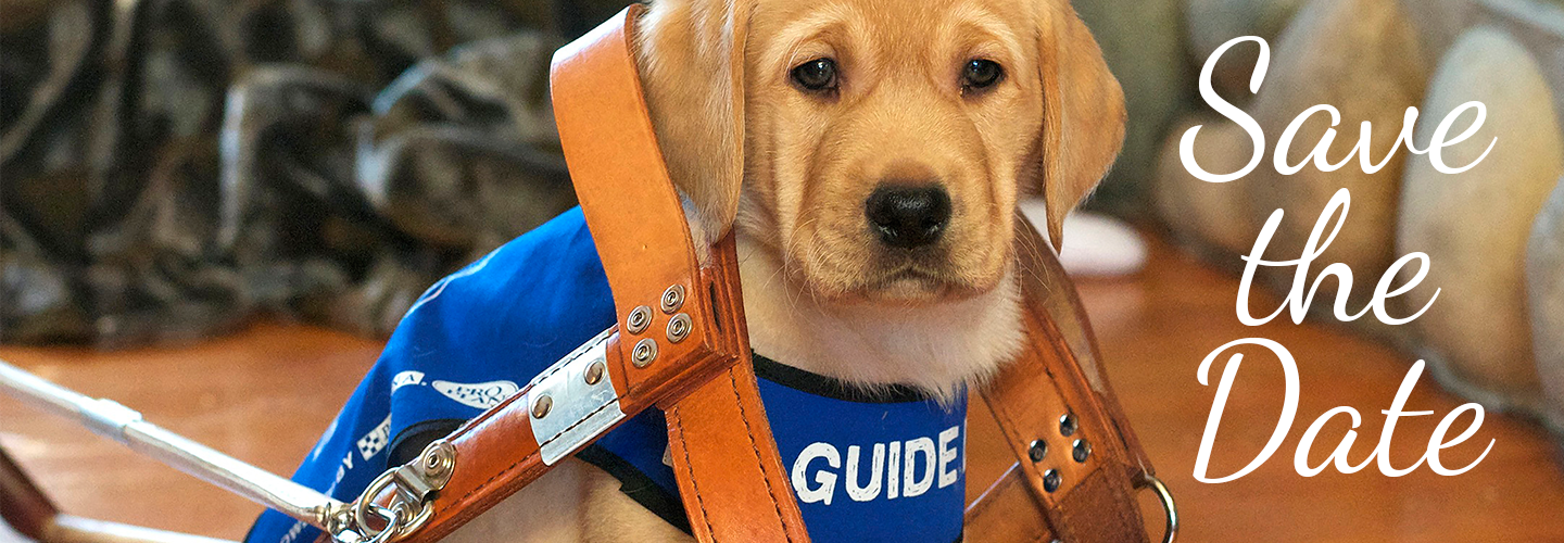 Golf For Guide Dogs