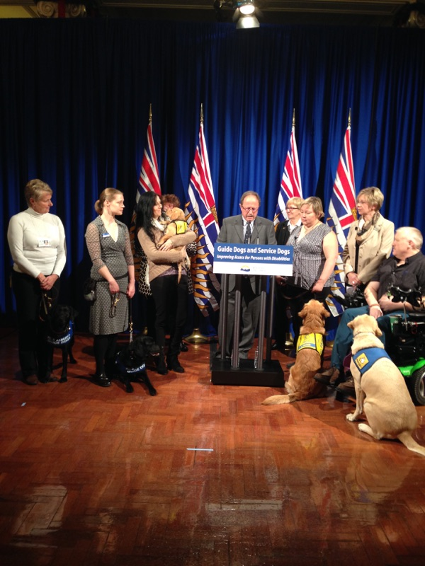 New Guide Dog and Service Dog Act strengthens protection and access