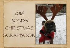 2016 Christmas Slideshow –  Delta, BC