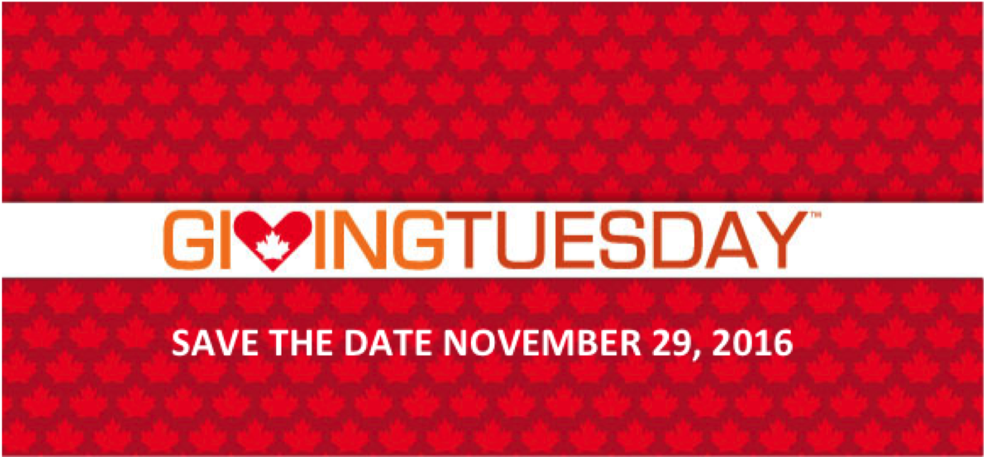 This Giving Tuesday, You Can Make a Profound Difference!