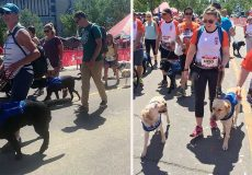 Scotiabank Charity Challenge – Vancouver registration open
