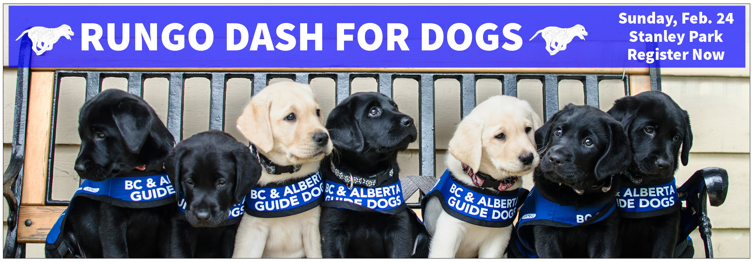 Register now for the 2019 RunGo Dash for Dogs