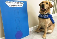 Spring cleaning for a cause! Alberta Guide Dogs is having a donation drive