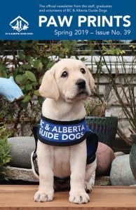 Puppy Spirit with her BC Guide Dogs jacket on is on the cover of Paw Prints newsletter for Spring 2019