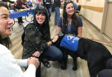 Sponsorship supporters attend Puppy 'Paw-ties' in Calgary, AB and Delta, BC