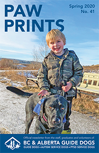 Spring 2020 Cover of Paw Prints newsletter - Brock with ASD Terra
