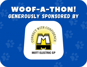 Generously sponsored by Mott Electric