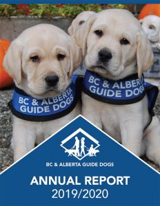 Annual Report 2019/20 for BC & Alberta Guide Dogs - picture of two young yellow labrador puppies on the front cover