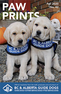 Puppies Verne and Blyth on the cover of Paw Prints newsletter