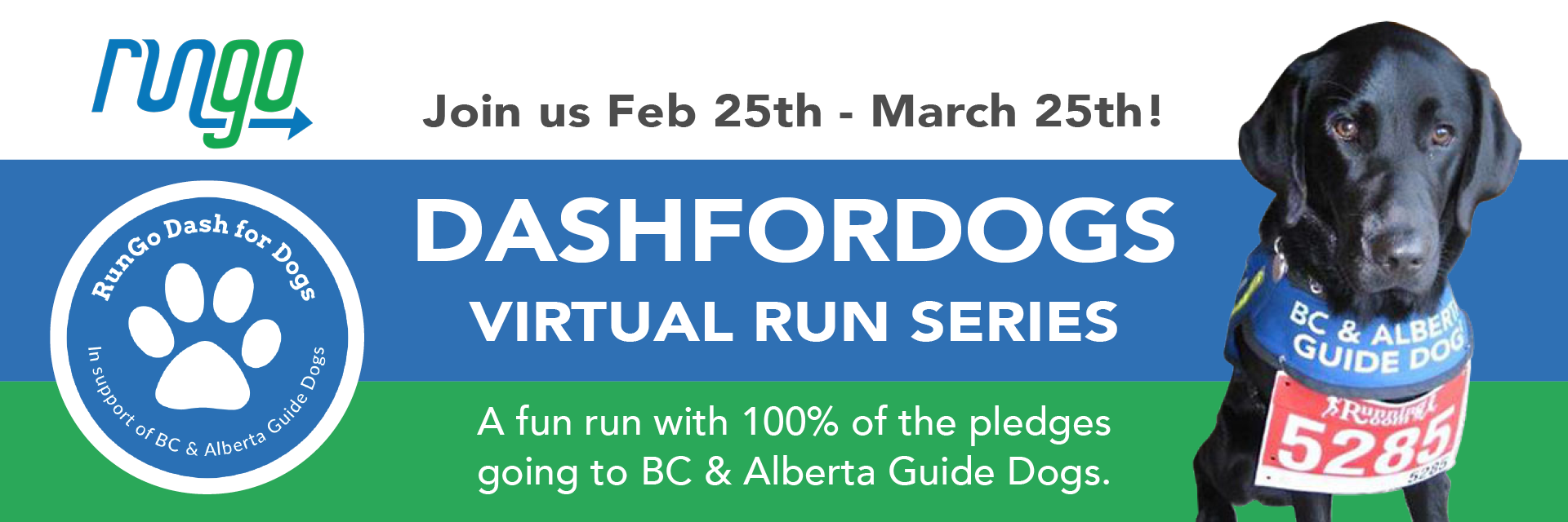 This year's RunGo Dash for Dogs announced as special Virtual Race Series – Sign up today!